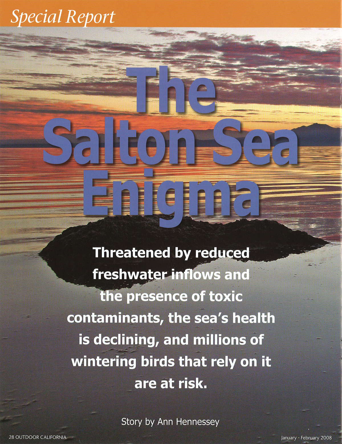 the_salton_sea_enigma_p28