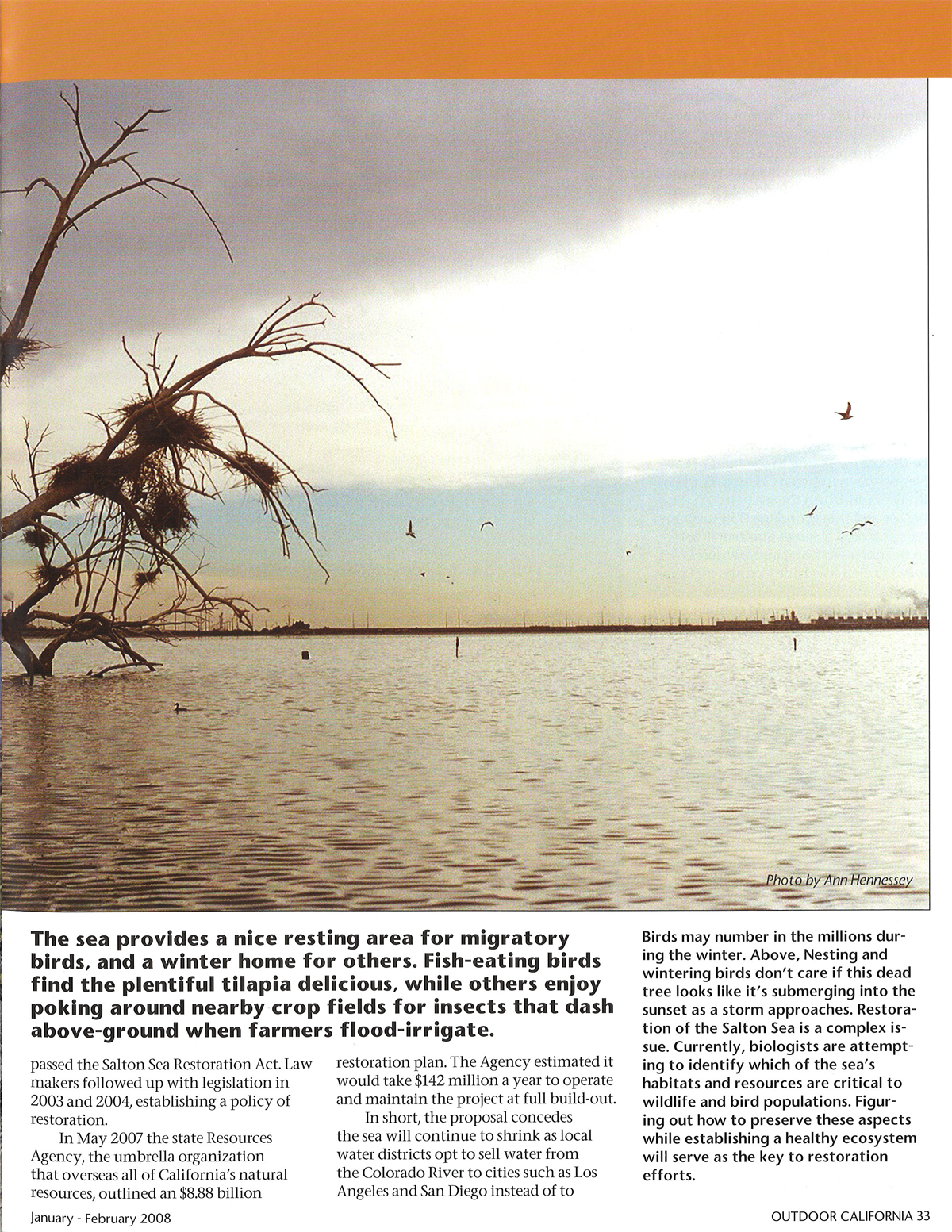 the_salton_sea_enigma_p33