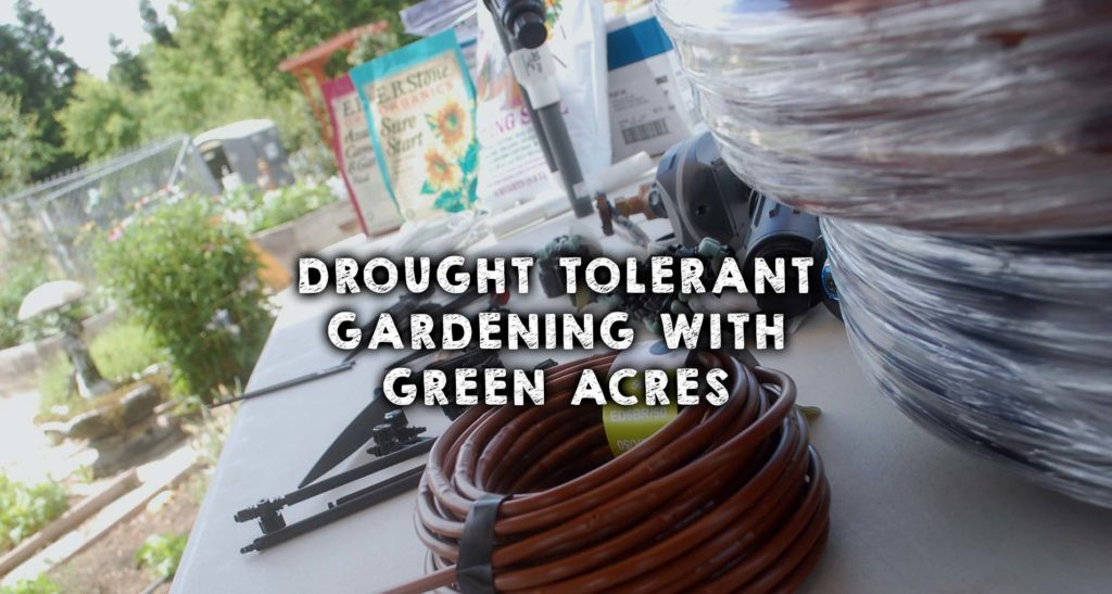 Drought Tolerant Gardening with Green Acres