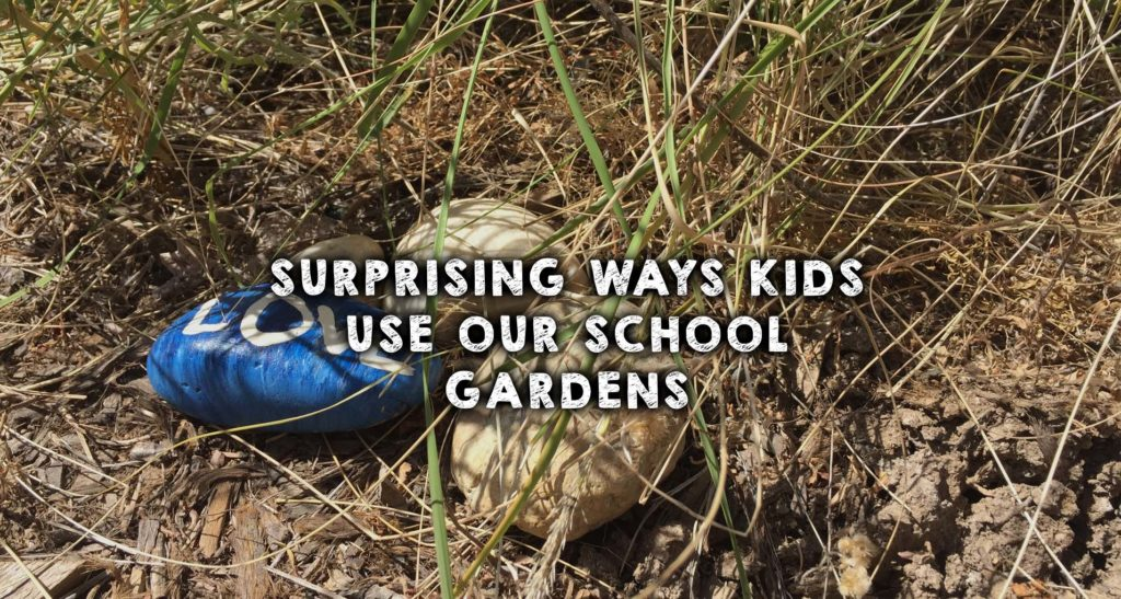 Surprising Ways Kids Use Our School Gardens