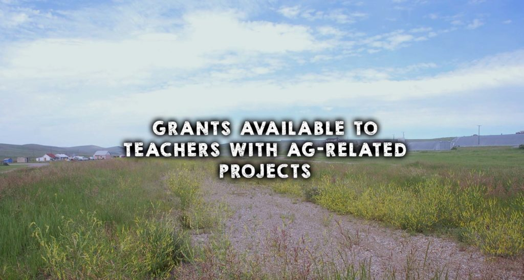 Grants Available to Teachers with Ag-Related Projects